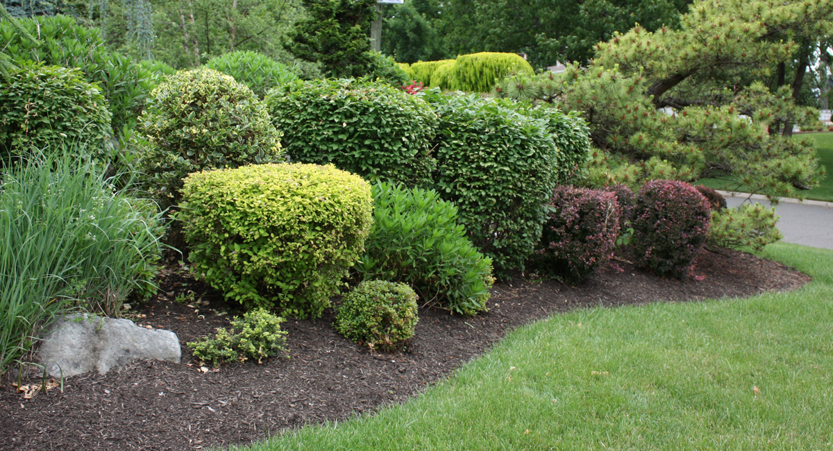 mulch delivery installation service for nj ny by denny wiggers